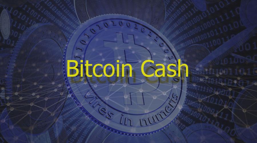 Bitcoin Cash – новая криптовалюта