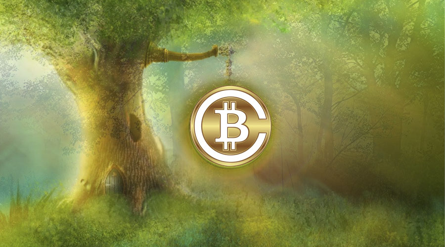 Насколько жизнеспособна новая криптовалюта Bitcoin Cash